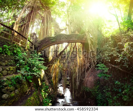 Surreal sunrise colors of fantasy Monkey Forest with Barong Lion bridge and Hindu Temple. Bali, Indonesia. Concept landscape for mysterious background