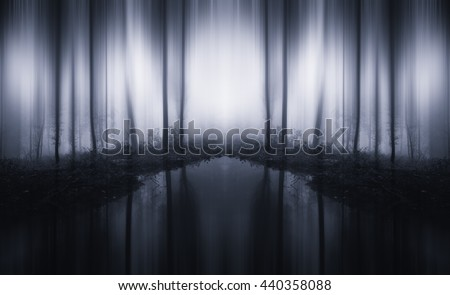 surreal woods - stock photo