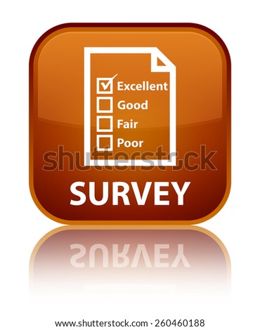 Survey (questionnaire icon) brown square button - stock photo