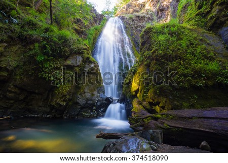 Susan Creek Falls in the Umpqua National Forest. This waterfall is quite large and easily accessible. - stock photo