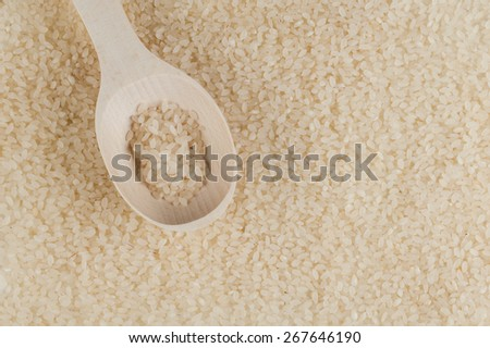 sushi and risotto rice texture  with wooden spoon  - stock photo