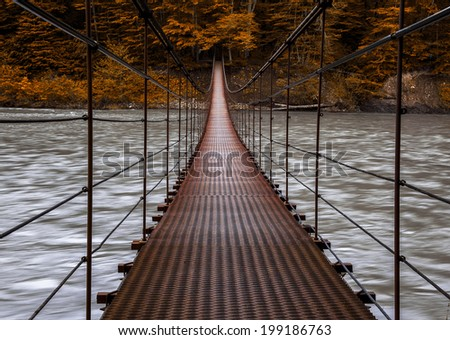 suspension bridge and autumn forest