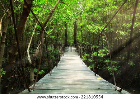 Suspension bridge in the forest - stock photo