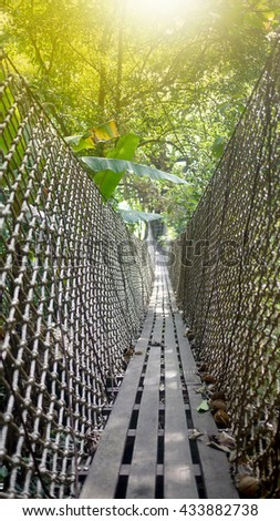 Suspension bridges from one tree to the destination, a zipline in bolaven plateau in southern Laos - stock photo