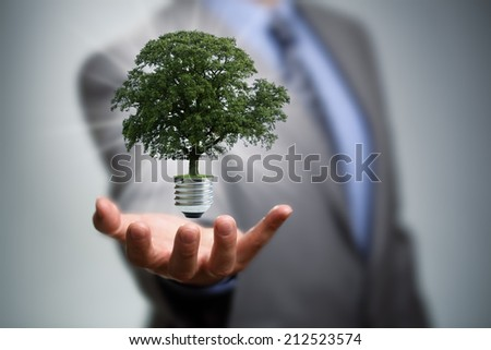 Sustainable resources, renewable energy and environmental conservation concept - stock photo