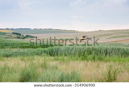Svishtov - July 2: Harvest of wheat in agricultural machinery in the background of dramatic sky on July 2, 2015, Svishtov, Bulgaria - stock photo