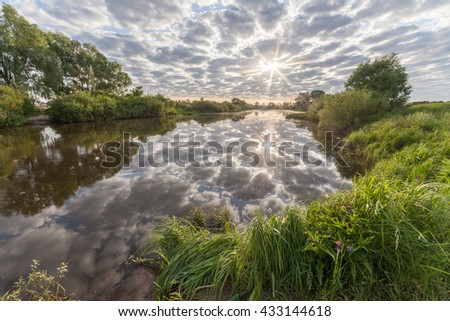 swamp in the forest - stock photo
