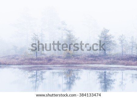 swamp lake in the mist, early morning