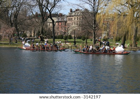 Swan Boats in Boston's Public Gardens.