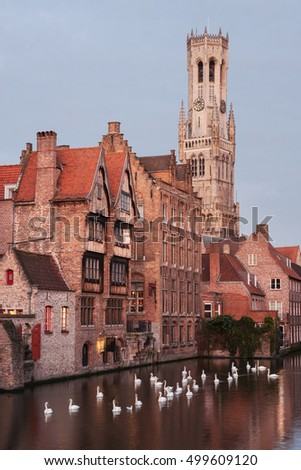 Swans on the beautiful canals of Bruges (or Brugge) in Belgium.