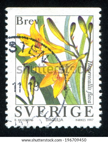 SWEDEN - CIRCA 1997: stamp printed by Sweden, shows Yellow Day-lily, circa 1997