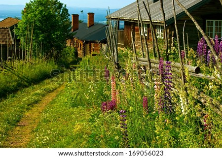 Swedish landscape with narrow road between log houses and wooden fence in summer.