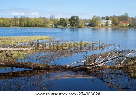 Swedish natural salmon area in spring - stock photo