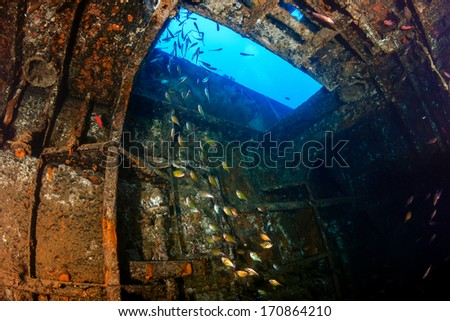 Sweepers swim inside the engine room of an underwater shipwreck - stock photo