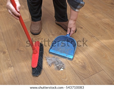 Great Sweeping Wooden Laminate Floor With Brush And Shovel Stack Of Dirt Close Up