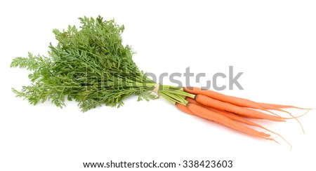 Sweet and fresh carrots with leafs on white