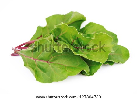 Sweet beet leafs(mangold) on white - stock photo