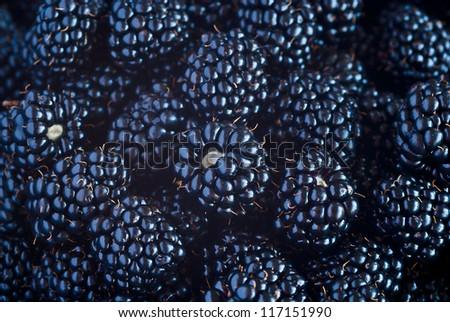 Sweet Blackberry berry closeup view background - stock photo