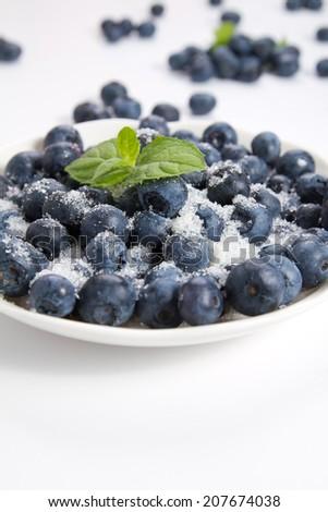 Sweet blueberry on the white background  - stock photo