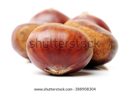Sweet chestnut on white background - stock photo