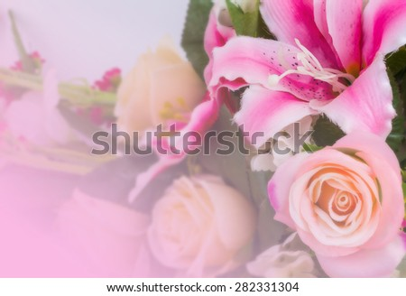 sweet color roses in soft and blur