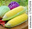 Sweet corn, green cabbage, purple cabbage and red chili products from mixed organic farm in closed-up on natural green background. - stock photo