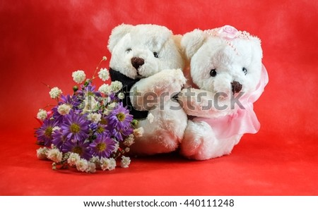 Sweet couple teddy bear with flower on red background.