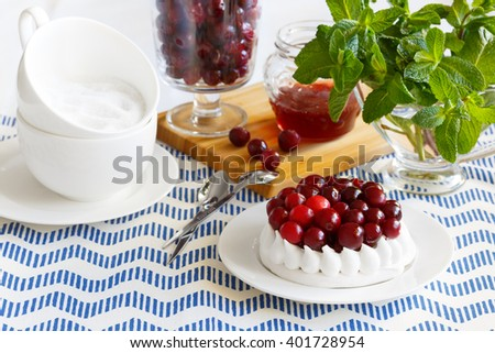 Sweet dessert with cranberries. Meringue cake decorated with cranberries - stock photo