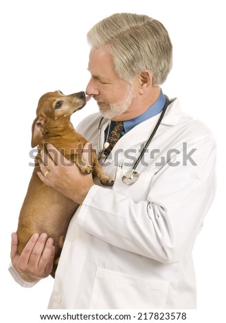 Sweet Dog Giving Veterinarian A Kiss/ On White Background - stock photo