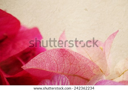 Sweet flowers on mulberry paper texture