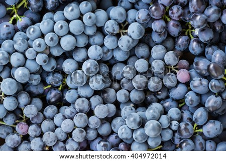 Sweet fresh grape. Grape background - stock photo