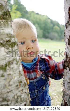 Sweet funny baby boy with blue eyes in a jeans scarf hiding behind a big old tree in park  - stock photo