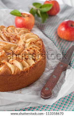 Sweet homemade apple cake with cinnamon - stock photo