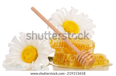 Sweet honey with honey dipper and two flowers - stock photo