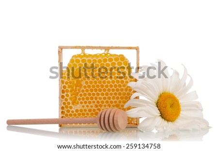 Sweet honey with honey dipper and white flower on white background - stock photo