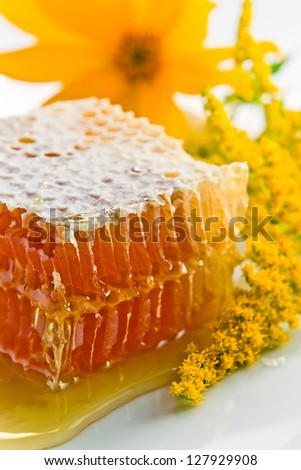 sweet honeycomb with honey and yellow flowers