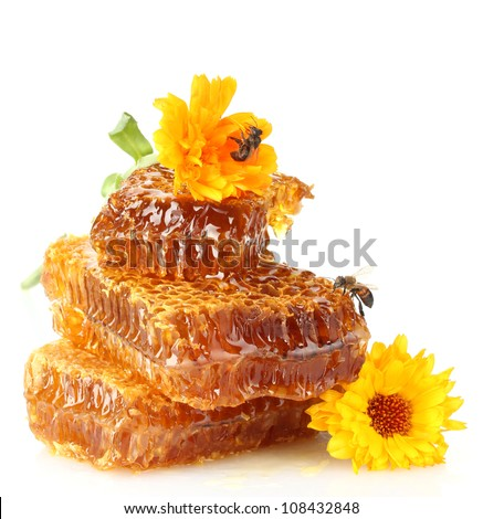 sweet honeycomb with honey, bee and flowers, isolated on white - stock photo