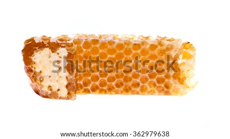sweet honeycomb with honey, isolated on white