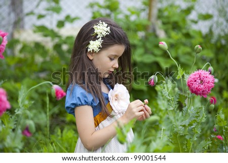 Sweet little girl in a country yard with blossom poppies - stock photo
