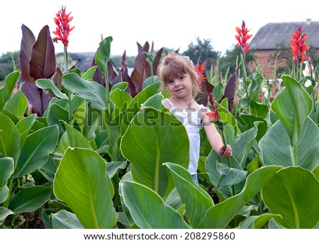 sweet little girl in a field with flowers  - stock photo