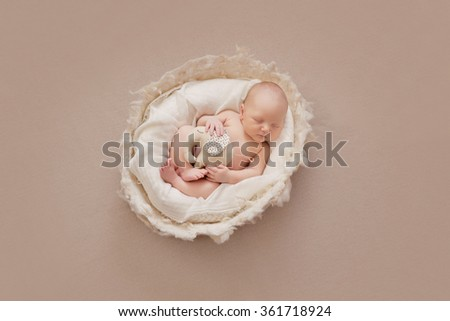 Sweet newborn baby boy in wool nest