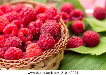 Sweet Organic Raspberries in a Wicker Basket - stock photo