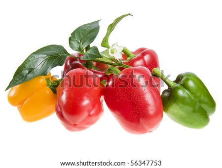 sweet peppers set heap  isolated