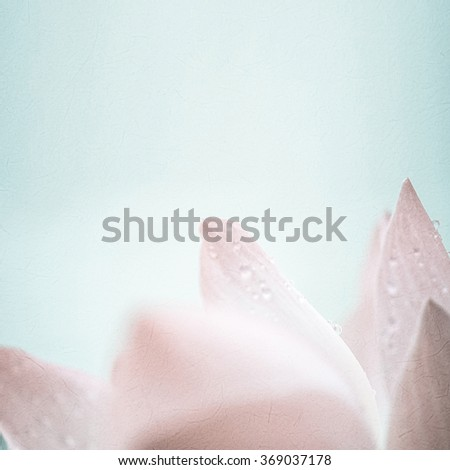 sweet pink lotus in soft color and blur style on mulberry paper texture - stock photo