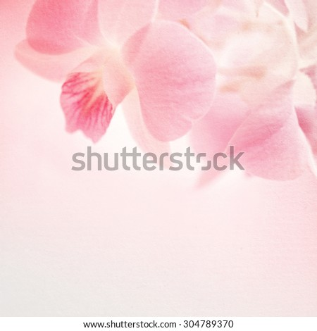 sweet pink orchids on mulberry paper texture for background             - stock photo