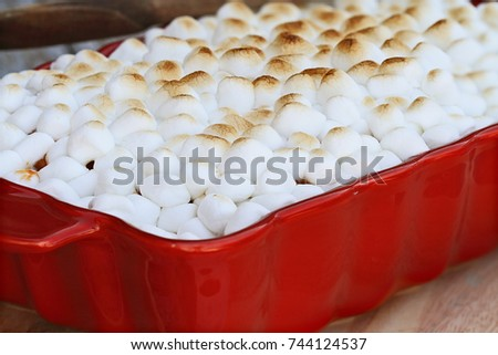 Sweet Potato Casserole baked with mini marshmallows ready for Thanksgiving Day. Extreme shallow depth of field with selective focus.