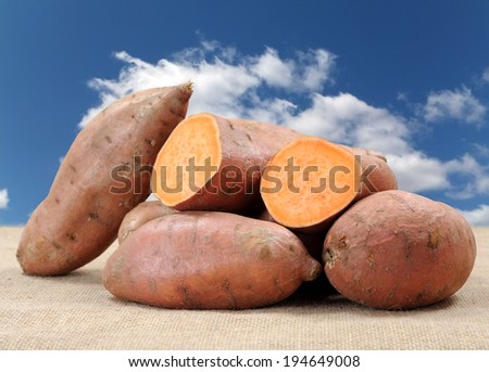 sweet potato on the table against blue sky