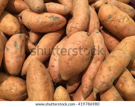 Sweet potatoes in a produce section of a modern grocery store - stock photo