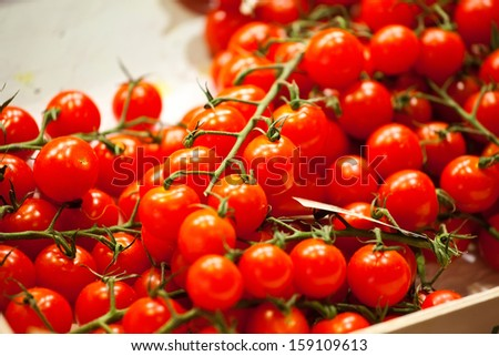 Sweet red tomatoes on branches laying on market counter