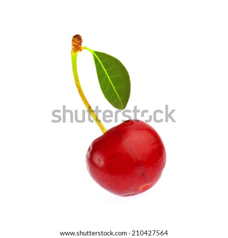 Sweet ripe cherry with leaf isolated on white background